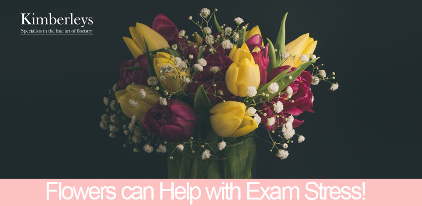 Flowers can Help with Exam Stress