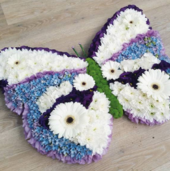 Butterfly White Blue and Purple